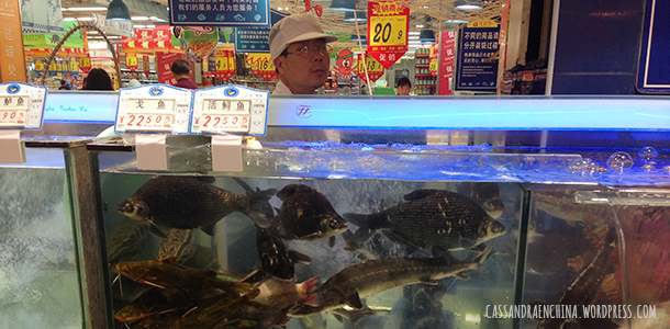 supermercado_chino13