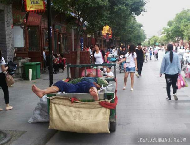 siesta_china_2