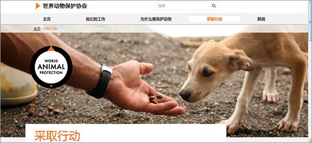 website_derecho_animales